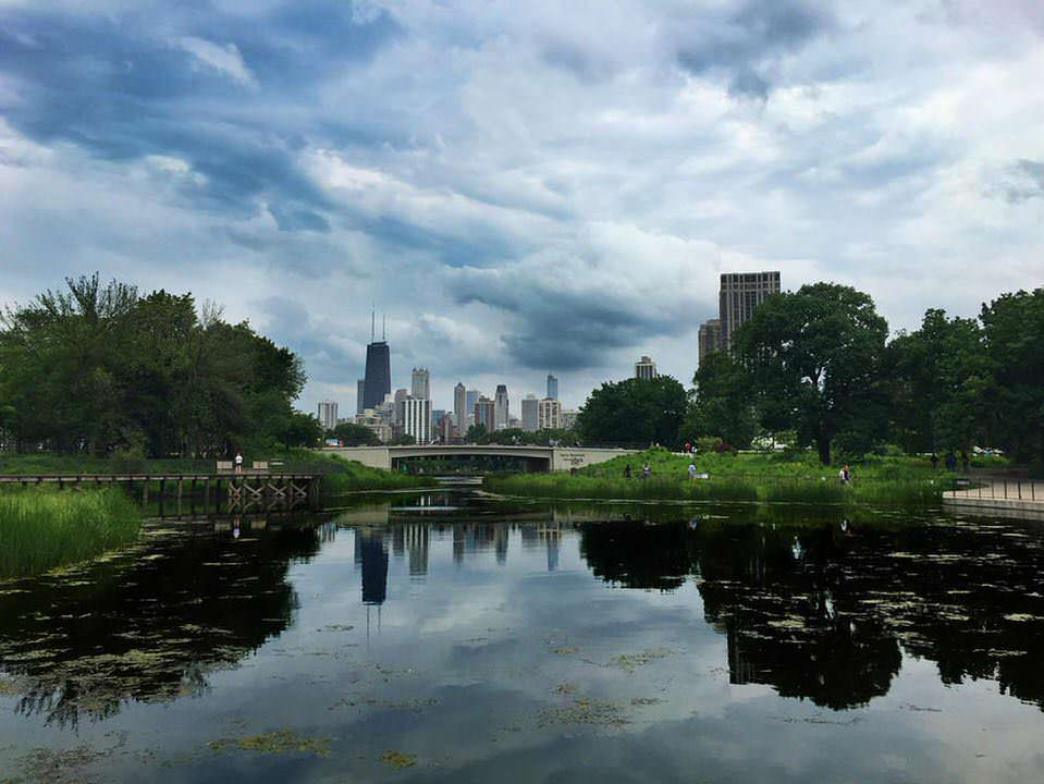 Glorious Summer Chicago Skyline