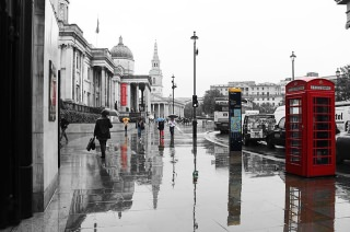 Touch Of Color On A Grey London Day